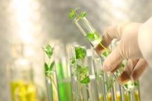 greener_chemistry_web_280[1]
